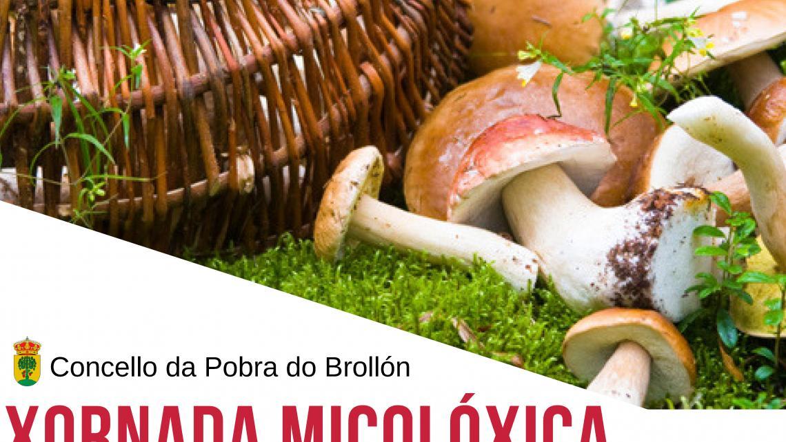 Cartel xornada micolóxica